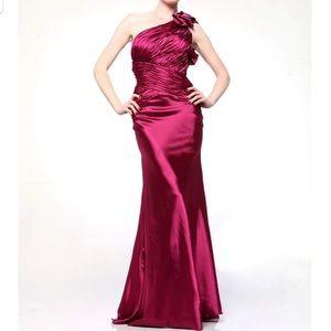 Cinderella Raspberry dress size 6
